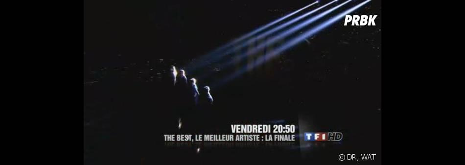 Clap de fin pour The Best, le meilleur artiste sur TF1.