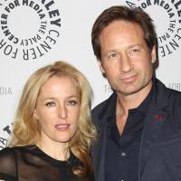 X-Files 3 : David Duchovny et Gillian Anderson bientôt réunis au cinéma pour les 20 ans ?