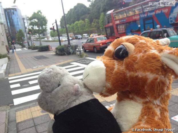 Au Japon, une agence de voyage emmène des peluches en vacances