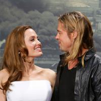 Angelina Jolie et Brad Pitt : leur vin français s'arrache pour 10 000 euros