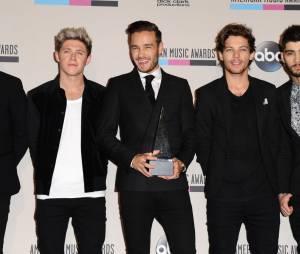 American Music Awards 2013 : deux prix pour One Direction
