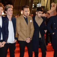 One Direction : une télé-réalité et un nouvel album en préparation ?