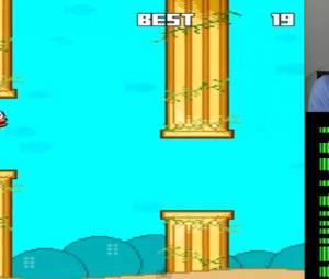 Une vidéo de gameplay de Splashy Fish, le remplaçant de Flappy Bird