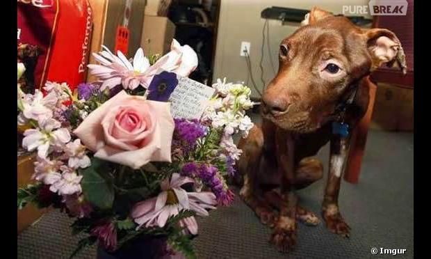 Patrick reçoit des fleurs