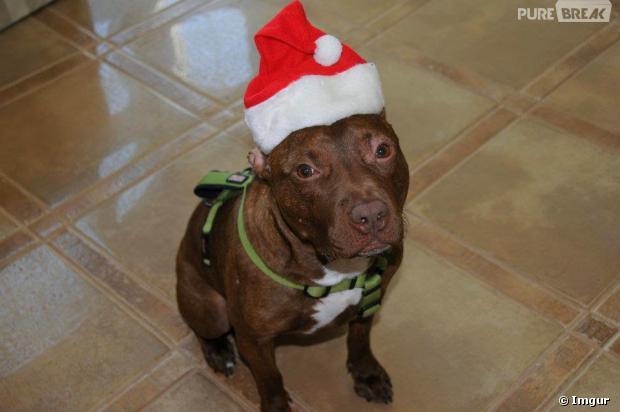 Patrick à Noël