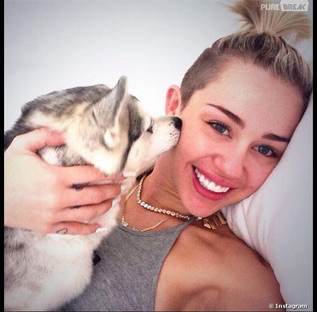 Miley Cyrus attristée : son chien Floyd est mort