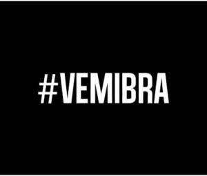 Zlatan Ibrahimovic : #VemIbra, la campagne pour qu'il vienne au Mondial 2014