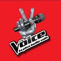 The Voice 4 : la date de diffusion sur TF1 dévoilée