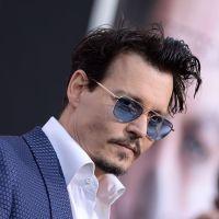 Johnny Depp, Adam Sandler... top 10 des acteurs américains les moins rentables de 2014