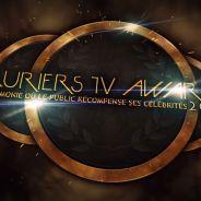 Lauriers TV Awards 2015 : invités, déroulement du show... La cérémonie en direct
