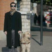 Drôle et touchant : la vidéo pour soutenir les chiens guides d'aveugles