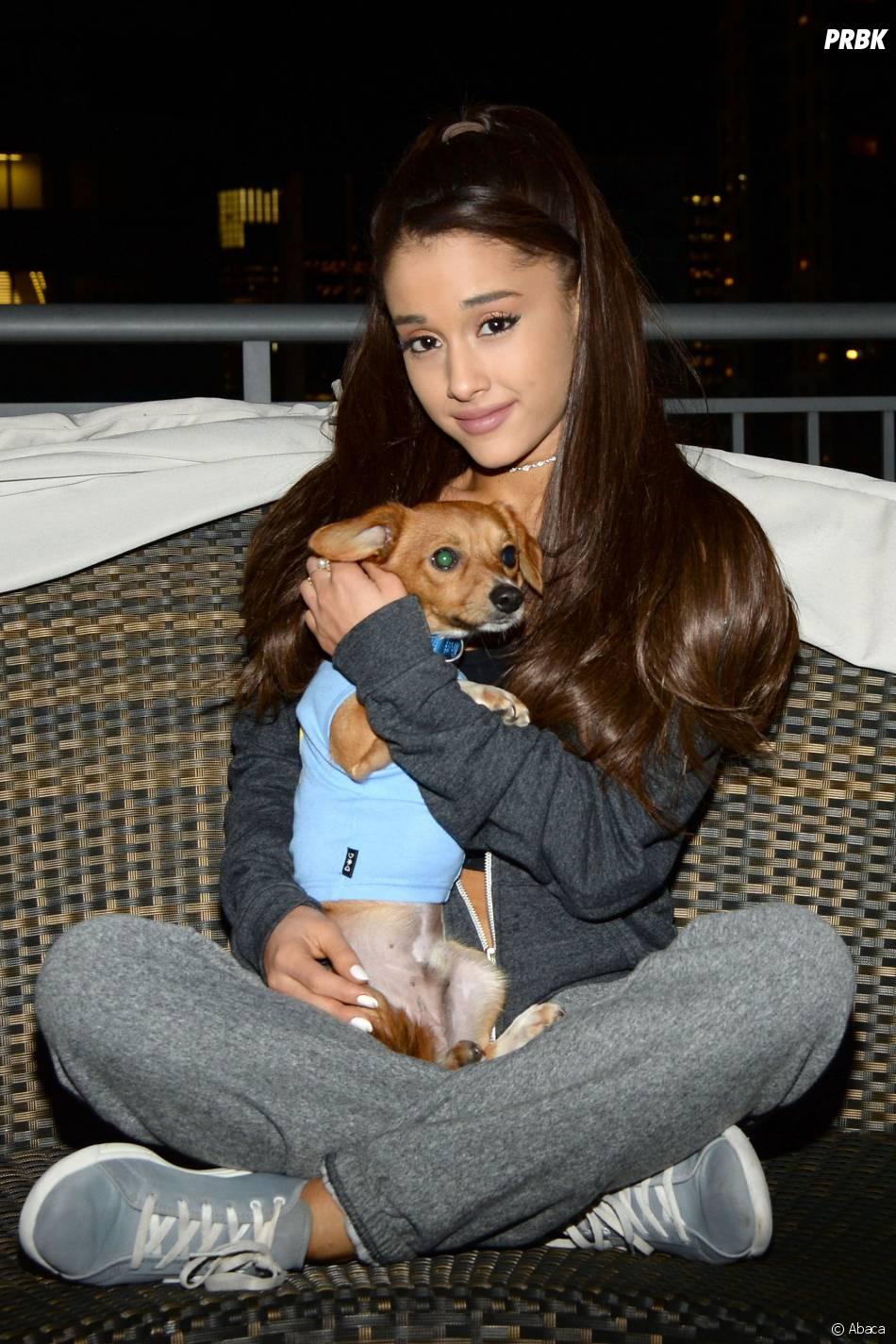 Ariana Grande s'associe à un refuge pour animaux pour aider des chiens à être adoptés