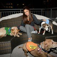 Ariana Grande généreuse : son cadeau qui a du chien à certains de ses fans