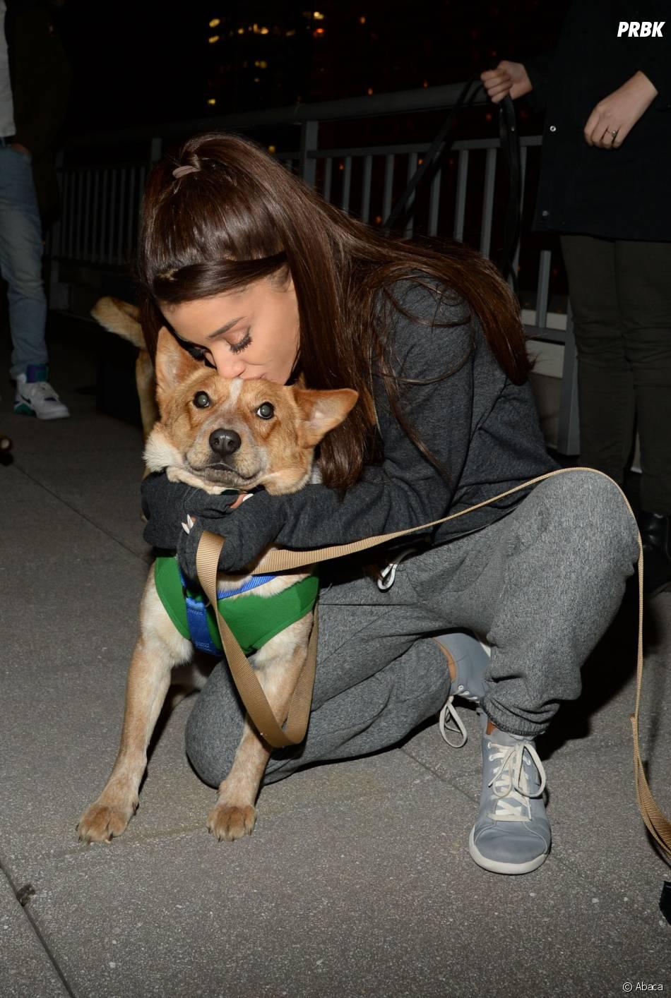 Ariana Grande fans des chiens