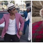 Après Uptown Funk, voici Uptown Cat : Mark Ronson fait même danser les chats !