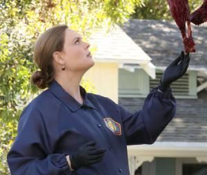 Bones saison 10 : Brennan bientôt enceinte dans la série