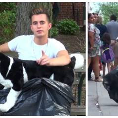Il fait semblant de battre son chien dans la rue, la réaction des passants est stupéfiante !