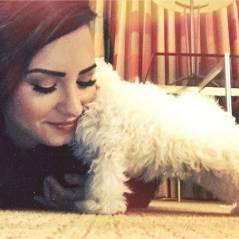 Demi Lovato : les circonstances glauques et traumatisantes de la mort de son chien