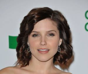 Sophia Bush : son évolution en photos