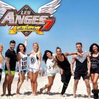 Les Anges : la saison 9 diffusée sur D8 en septembre prochain ?