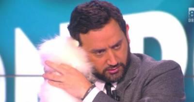 Enora Malagré : son adorable chien, Ginette, présenté dans TPMP