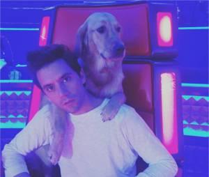 Mika gaga de ses chiens sur Instagram