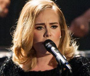 Adele n'apprécie pas le comportement irrespectieux de certains de ses fans.