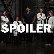 Grey's Anatomy saison 13 : après Sara Ramirez, un autre départ en vue ?