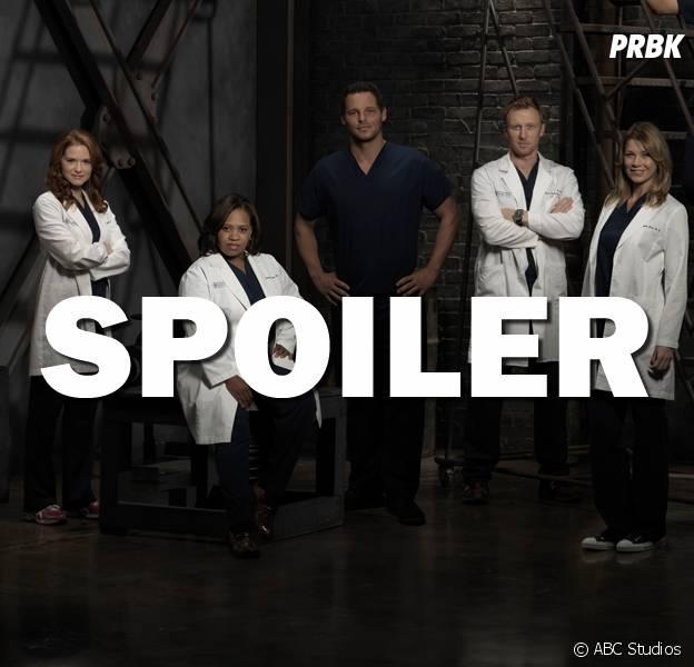 Grey's Anatomy saison 13 : un autre départ en vue ?