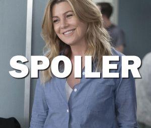 Grey's Anatomy saison 14 : nouveau prétendant pour Meredith dans l'épisode 17