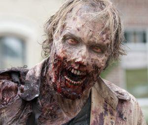 The Walking Dead bientôt version jeu télé avec des stars sur TF1 ?