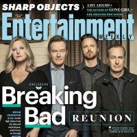 Breaking Bad : les acteurs réunis pour les 10 ans de la série