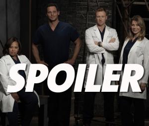 Grey's Anatomy saison 15 : un nouveau couple surprise dans l'épisode 17