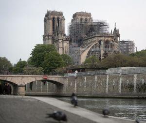 Incendie de Notre-Dame de Paris : la cathédrale au lendemain de l'incendie