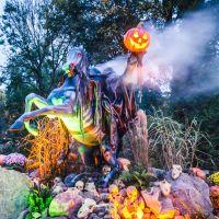 Nigloland : 4 bonnes raisons d'aller tester le parc d'attractions canon pour Halloween