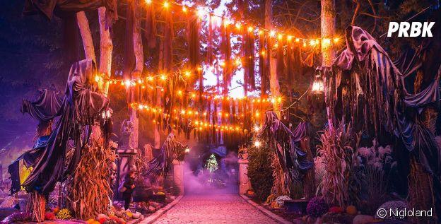 Nigloland : le parc d'attractions te plonge dans des décors de ouf