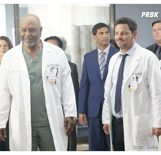 Grey's Anatomy saison 16 : bientôt un spin-off sur Pac North avec Alex et Richard ?