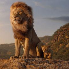 Le Roi Lion 2 : c'est officiel, Disney commande une suite inédite du film en live-action