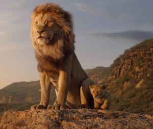 Le Roi Lion 2 : c'est officiel, Disney commande une suite du film en live-action