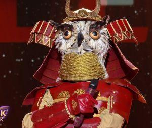 Mask Singer 2 : quelle célébrité est le hibou ? Les indices sur son identité (Mise à jour)