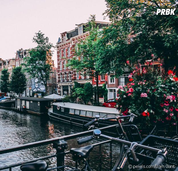 Amsterdam : bientôt une interdiction pour les touristes d'aller dans les coffee-shops ? La maire de la ville voudrait arrêter le tourisme lié à la weed