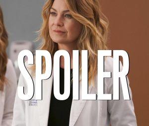 Grey's Anatomy saison 17 : un personnage est mort, Ellen Pompeo réagit