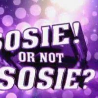 Sosie or not Sosie avec Vincent Cerutti sur TF1 ... un extrait de l'émission