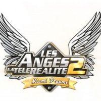 Les Anges de la télé réalité 2 sur NRJ12 ... Chaque candidat touche 2500€ par semaine