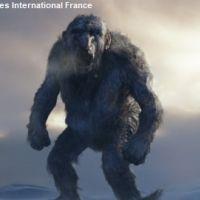 Troll Hunter : remake US en approche ... ''Maman j'ai raté le troll''