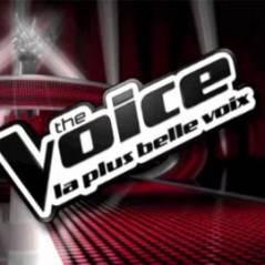 The Voice : Nikos Aliagas revient au télé-crochet avec Jenifer