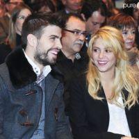 Shakira : bientôt Chevalier des Arts et des Lettres !