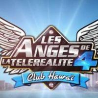 Les Anges de la télé réalité 4 : Aurélie, Marie, Amélie, le casting complet dévoilé