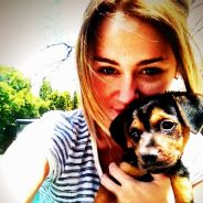 Miley Cyrus VS Taylor Swift : Gros battle entre chien et chat ! (PHOTOS)