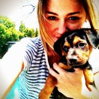 Miley Cyrus VS Taylor Swift : Gros battle entre chien et chat ! (PHOTOS)